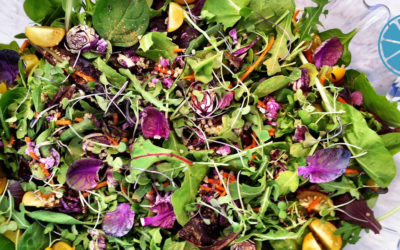 DEFINE foods Spring Festive Salad